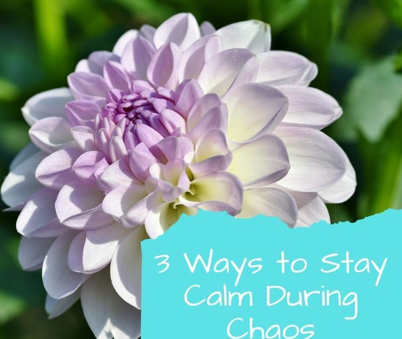 How to Stay Calm During Chaos Besides Having Green Clean Homes