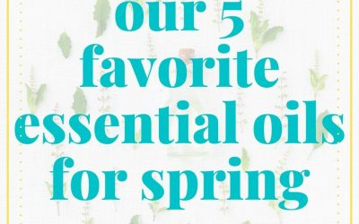 Our 5 Favorite Essential Oils to Diffuse in Spring