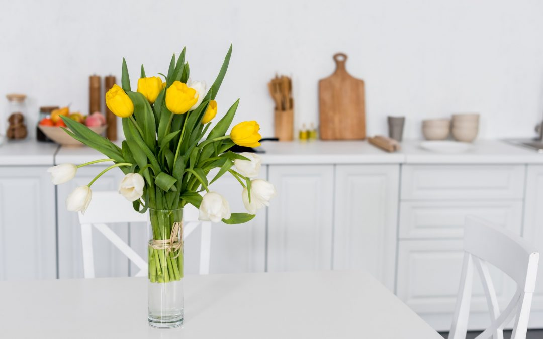 Spring Cleaning Tips from Sandia Green Clean