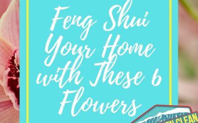 Feng Shui Says Your Home Needs These 6 Flowers: Here's Why…